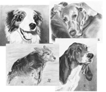 set of 4 dog cards